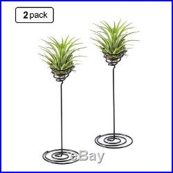 2 Plant Stand Holder Air Smal Metal Vase Tabletop Air Plants Indoor Home Decor