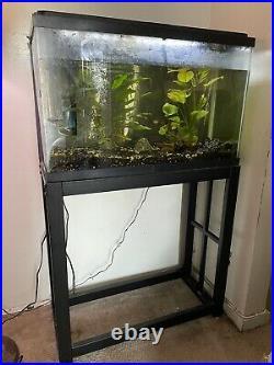 AQUARIUM 30 Gallon Fish Tank with Black Metal Stand 3 Fish, 2 Plants, Supplies
